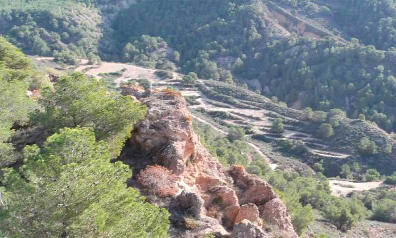 PicodelAguila1