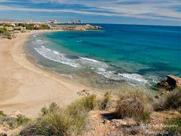 PlayasAguilas2